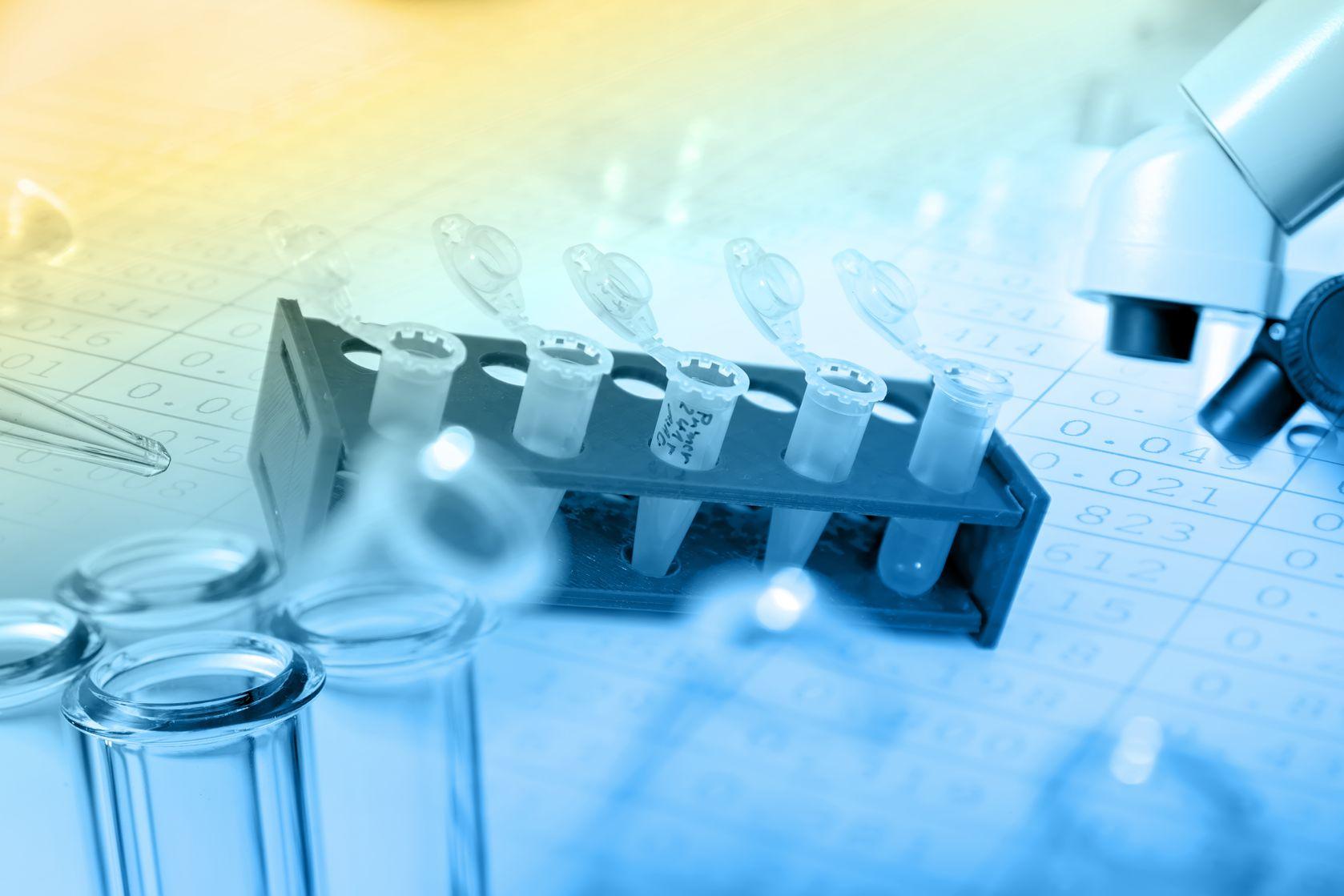Il Laboratorio info e servizi